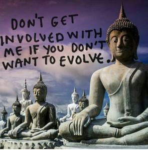 get involved to evolve
